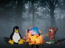 bsd-windows-linux